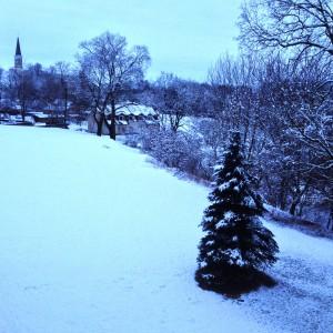 Sneeuw in Iecava