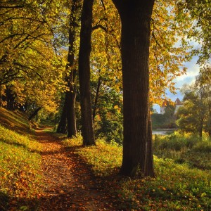 Bauska herfst